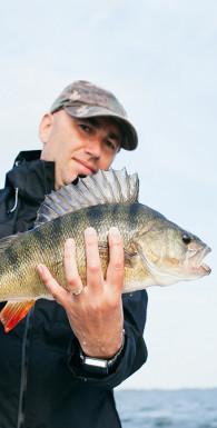 Рыба! Проверенный способ поднять боевой дух и улучшить результаты