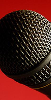 Камасутра для оратора. 10 глав о том, как получать и доставлять максимальное удовольствие, выступая публично